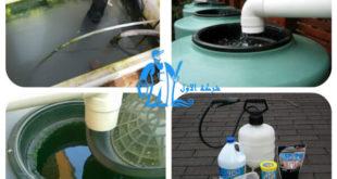 التخلص من الطحالب في خزان المياه